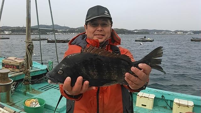 クロダイ長井かかり釣り2015年4月12日