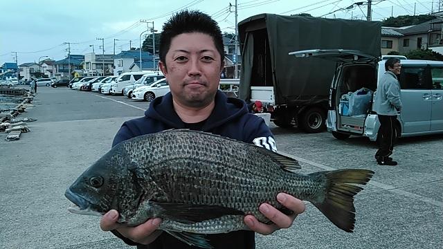 クロダイ長井かかり釣り2015年11月7日
