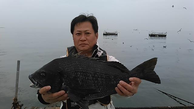 クロダイの長井かかり釣り2015年3月20日