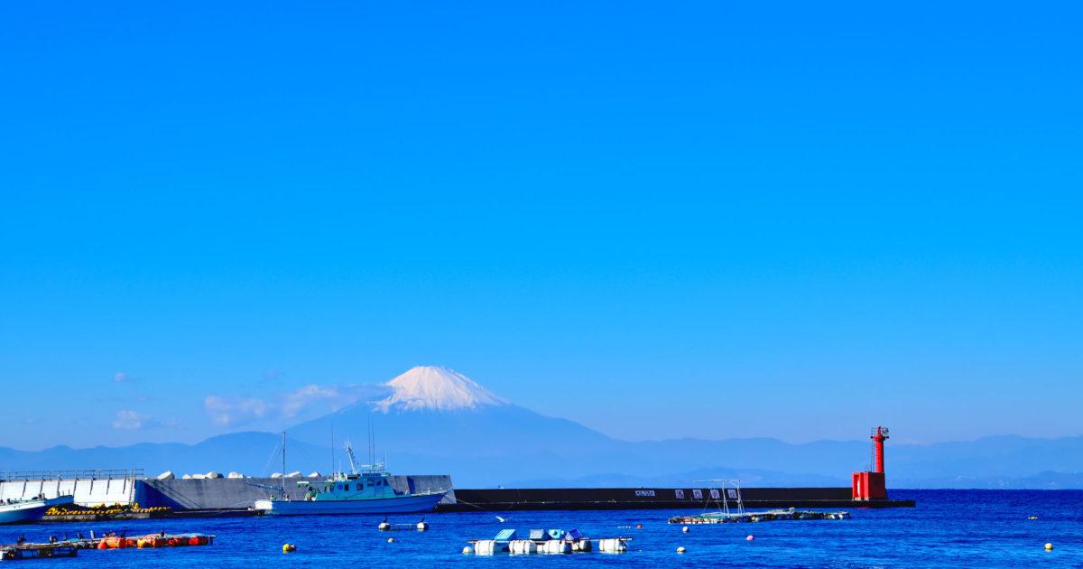 クロダイのかかり釣り 長井から見た富士山